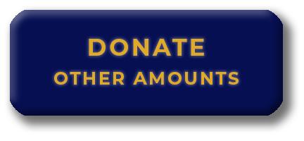donate a free amount